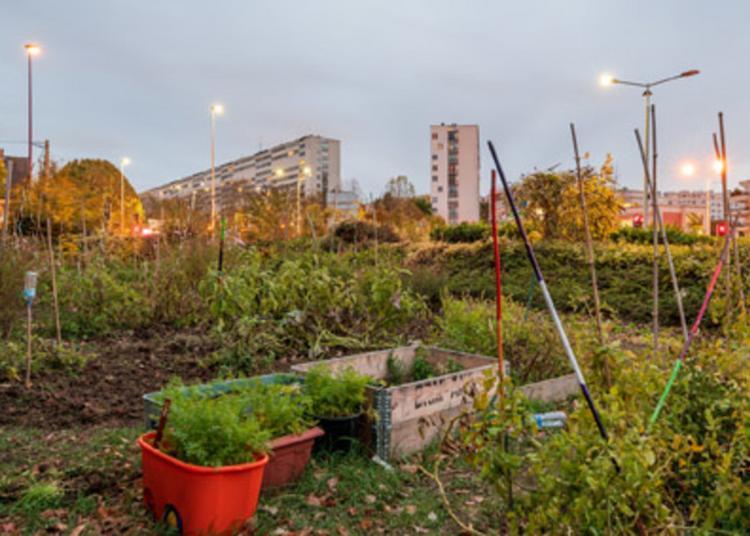 Balade Dans Nos Jardins Secrets à Fresnes