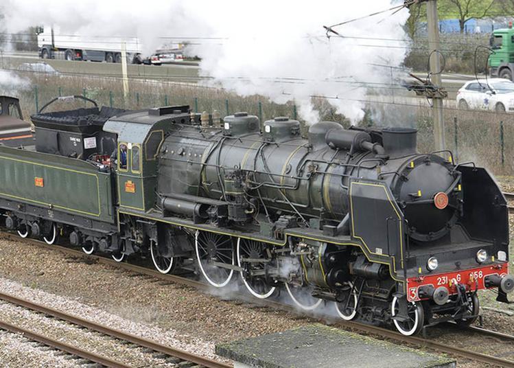 Balade En Locomotive à Vapeur à Auffay