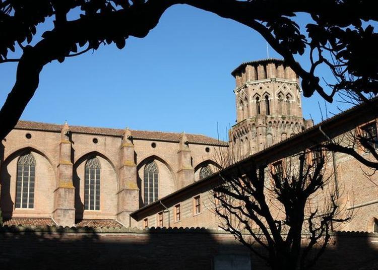 Balade Le Nez En L'air (en Lsf) à Toulouse