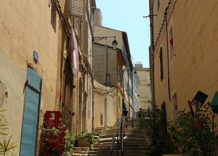 Balade Verte Dans Le Panier : La Nature En Partage à Marseille