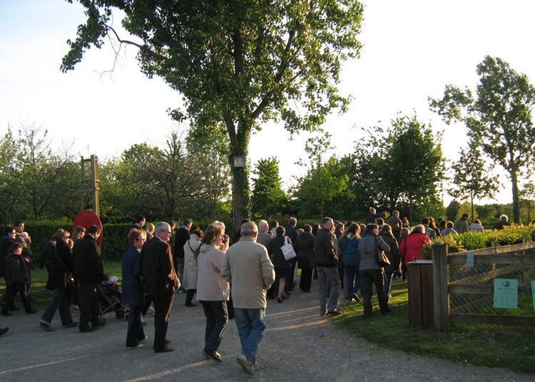 Balades Contées Dans Les Jardins De L'écomusée Sur Les Contes Et Légende Des Monts D'arrée à Rennes