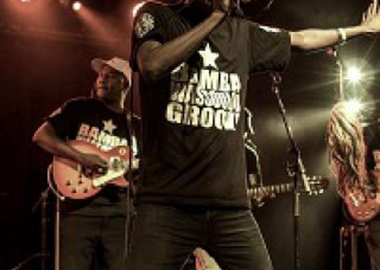Bamba Wassoulou Groove à Massy