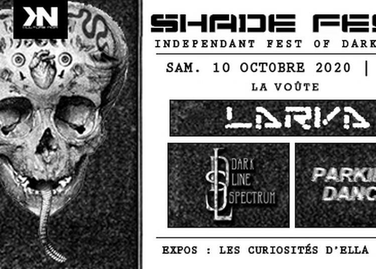 Shade Fest 4/ Concerts D4rk : Larva, Dls, Parking Dance - Expos à Bordeaux