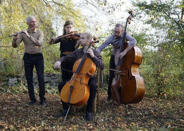 Bartók en Périgord : musique de chambre traditionnelle à Toulouse