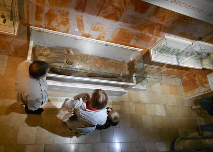 Beaux-arts, Histoire Naturelle,  Archéologie... Le Patrimoine Dans Sa Diversité ! à Troyes