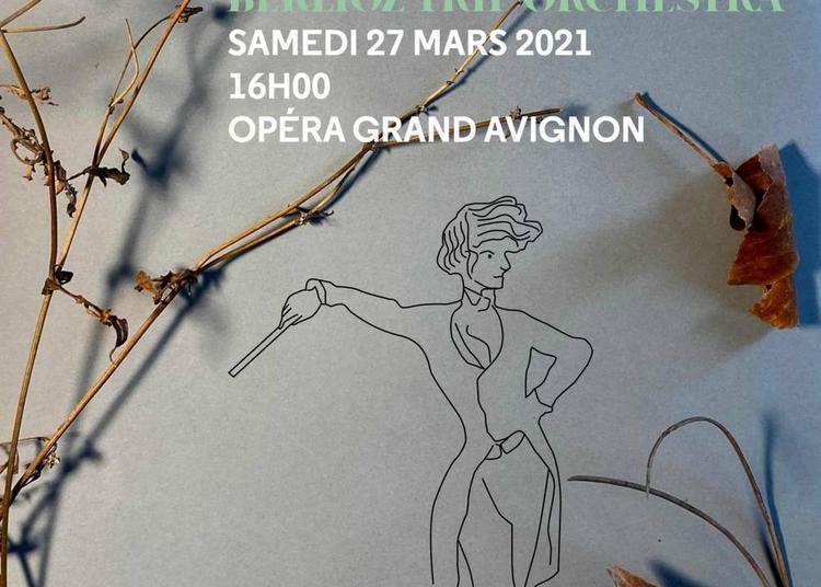 Berlioz Trip Orchestra à Avignon