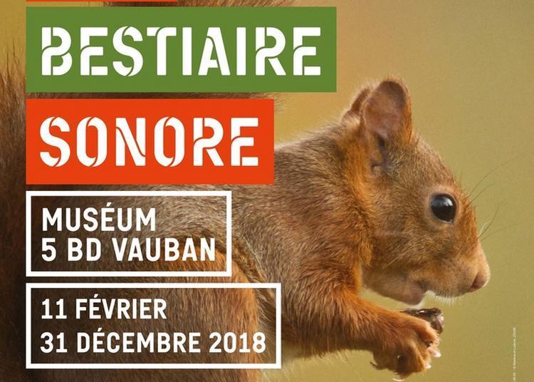 Bestiaire Sonore à Auxerre