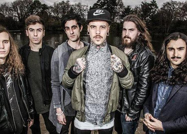 Betraying The Martyrs à Cannes