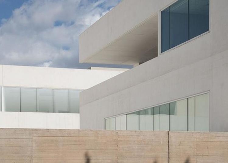 Bibliothèque, Visites, Ateliers Et Lectures Au Centre De Conservation Et De Ressources à Marseille