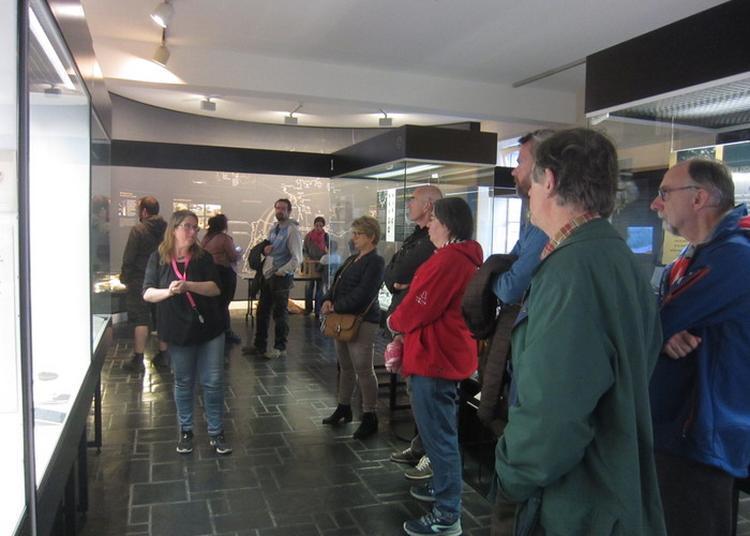 Bienvenue Aux Brittophones : Des Visites Flash à Deux Voix à Carnac