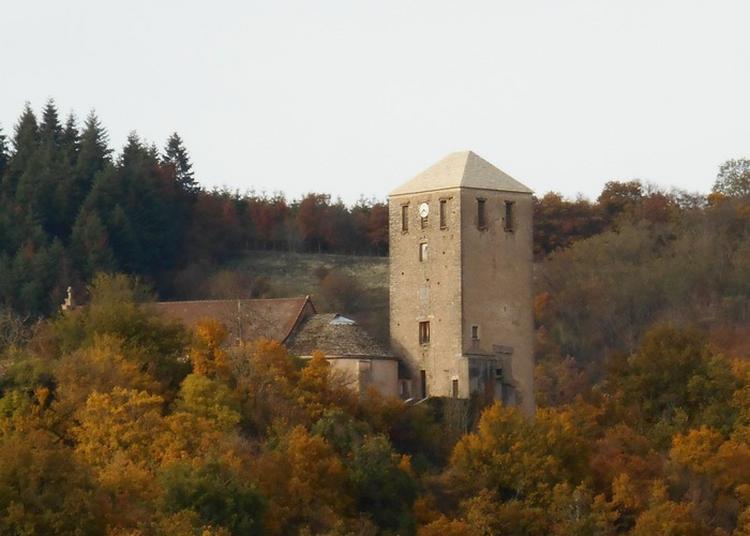 Biodiversité Et Paysages Patrimoine De Château, En Saône-et-loire, Site Européen Référencé Natura 2000 à Chateau