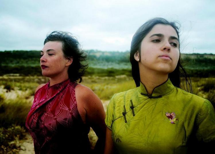 Birds on a wire | Rosemary Standley - Dom La Nena à Sete