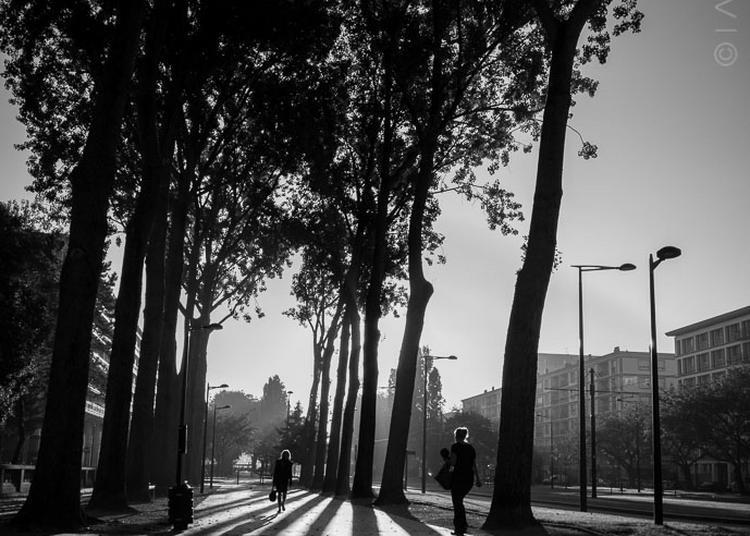 Black & White à Le Havre