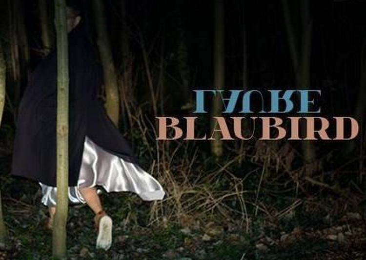 Blaubird à Paris 1er