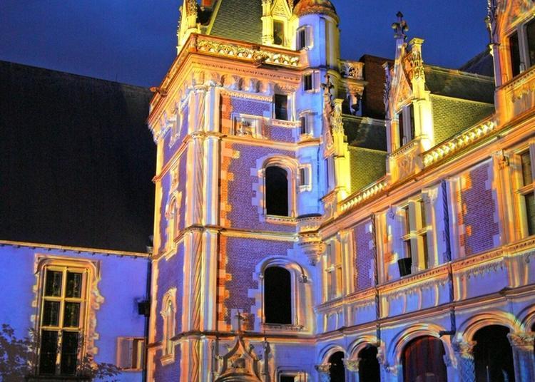 Blois Vous Est Conté...