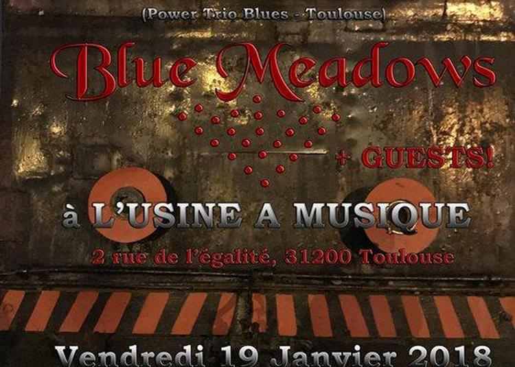 Blue Meadows, Blooming Bones + Guests à L'Usine à Musique à Toulouse