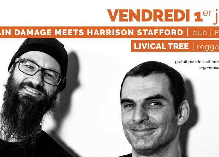 Brain Damage meets Harrisson Stafford et Livical Tree à Quimper