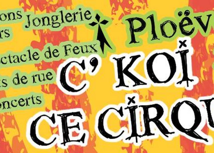 C Koi Ce Cirque à Ploeven