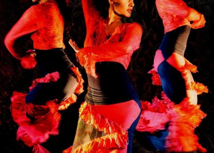 Cabaret Tablao Flamenco Gispy à Lyon