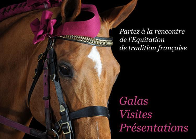 Cadre Noir Le Printemps Des Ecuyers à Saint Hilaire saint Florent