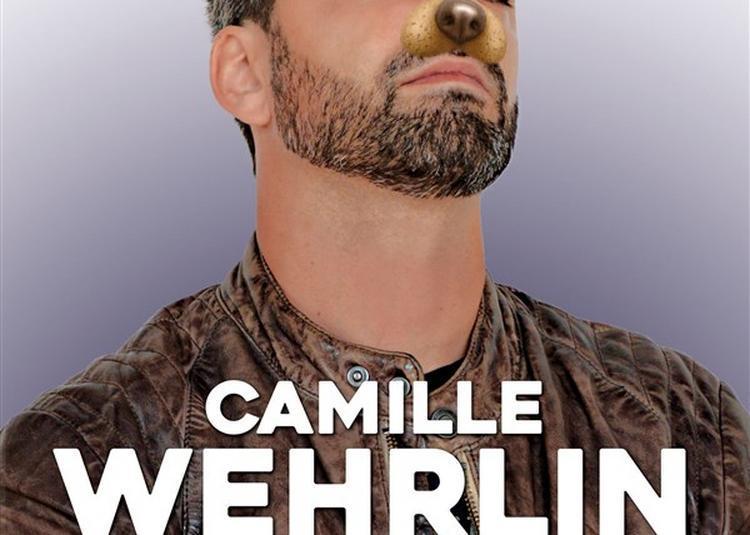 Camille Wehrlin Dans Chienne De Vie à Lyon