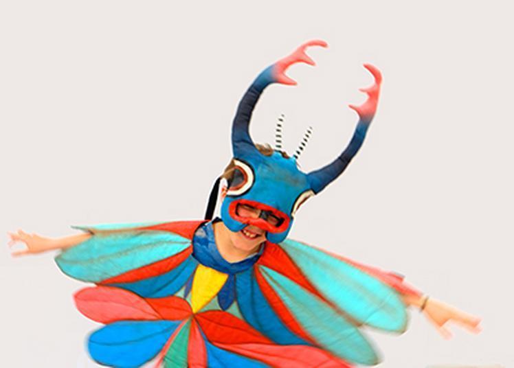 Carapace à plumes et autres parures animales à Tinqueux