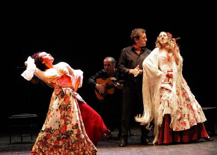 Carmen Flamenco à Bischwiller