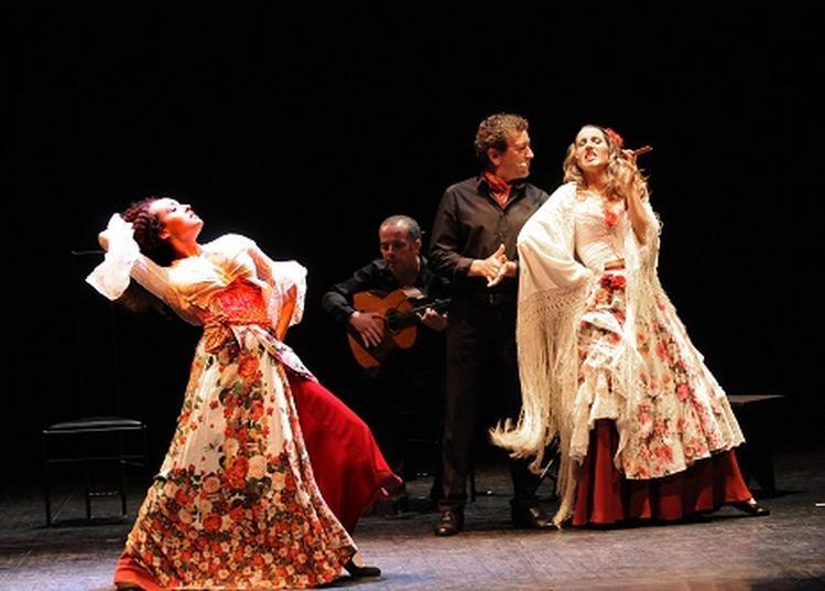 Carmen Flamenco à Le Mans