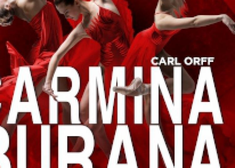 Carmina Burana à Lille