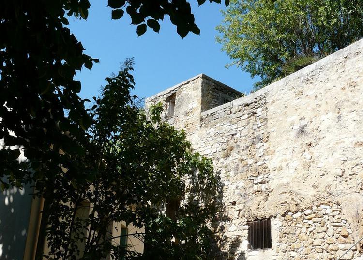Castellum Novum à Castelnau le Lez