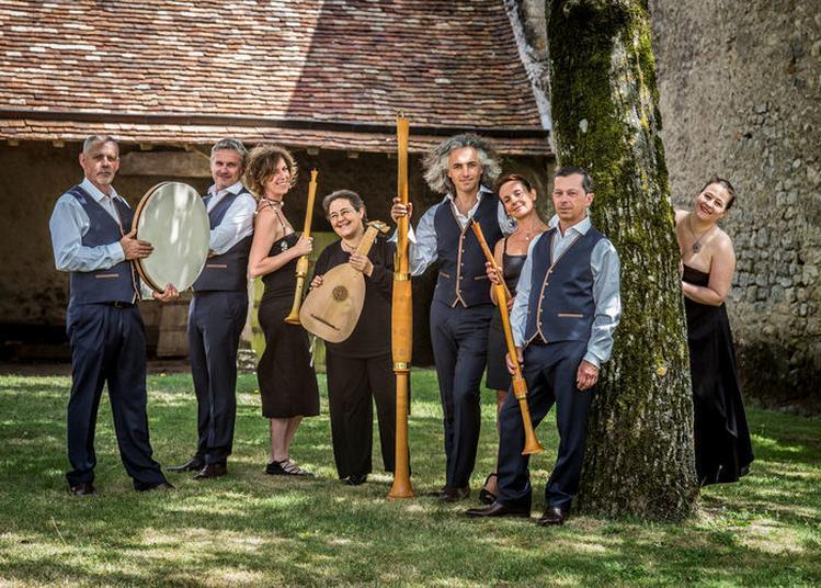 Causerie Sur Les Instruments Médiévaux, Avec Démonstration Musicale, Par La Cie Doulce Mémoire à Toulouse