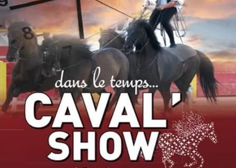 Caval'Show spectacle equestre à Palud des Noves