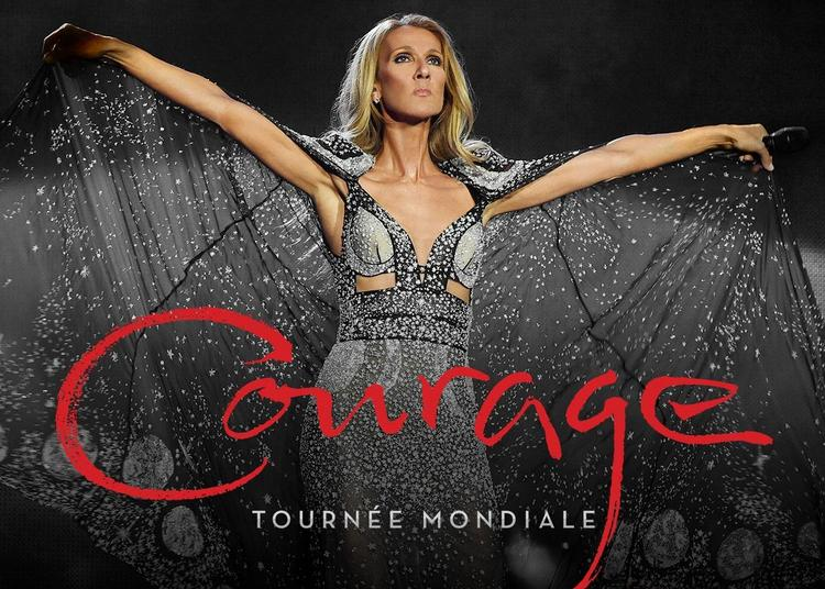 Céline Dion aux Vieilles Charrues à Carhaix Plouguer