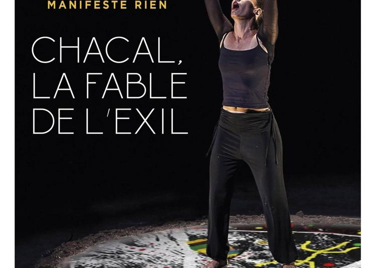 Chacal, la fable de l'exil à Marseille
