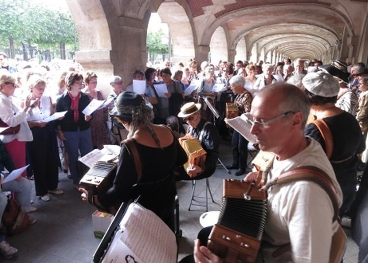Chantez Avec Les Tigresses Diatoniques ! à Paris 4ème