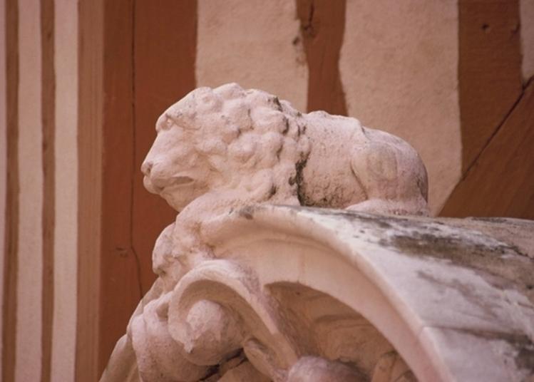 Chasse Aux Lions Dans Dijon, Promenades Conviviales