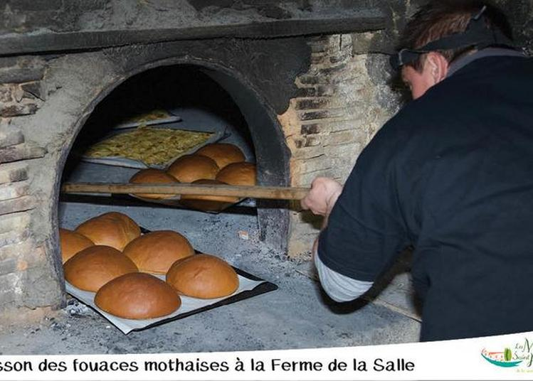 Chauffe Du Four à Bois De La Ferme De La Salle à La Mothe saint Heray