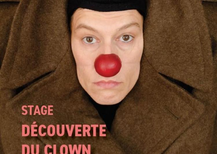 Chercher son clown à Muneville sur Mer