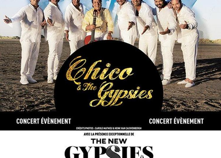 Chico & The Gypsies à Arles
