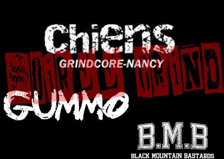 Chiens + Gummo + BMB à Saint Jean de Vedas