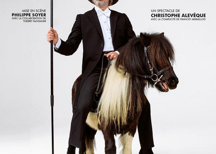 Christophe Aleveque - Vieux Con à Auray