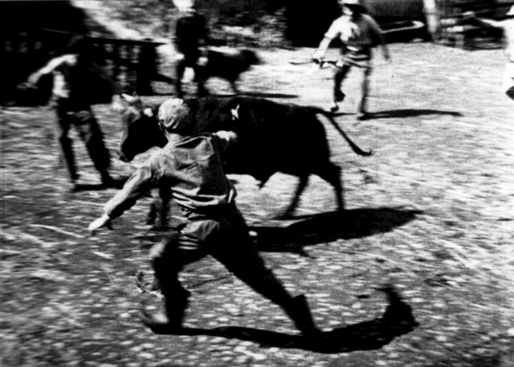 Ciné Plein-air : Ah! La Vache De Jean Le Du (1961, 9 Min) à Rennes