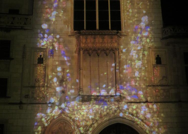 Circuit - Nuits Lumière à Bourges