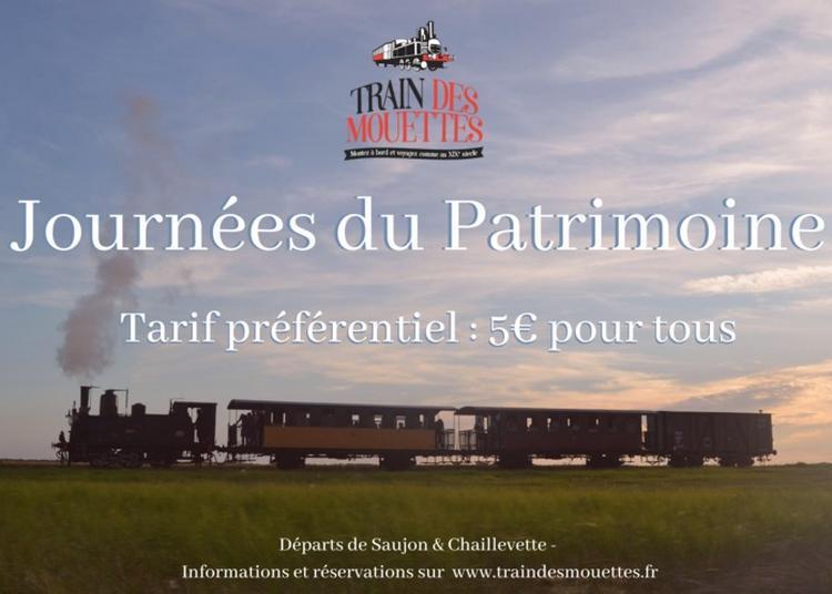 Circuit : Voyage à Bord Du Train Des Mouettes à Saujon