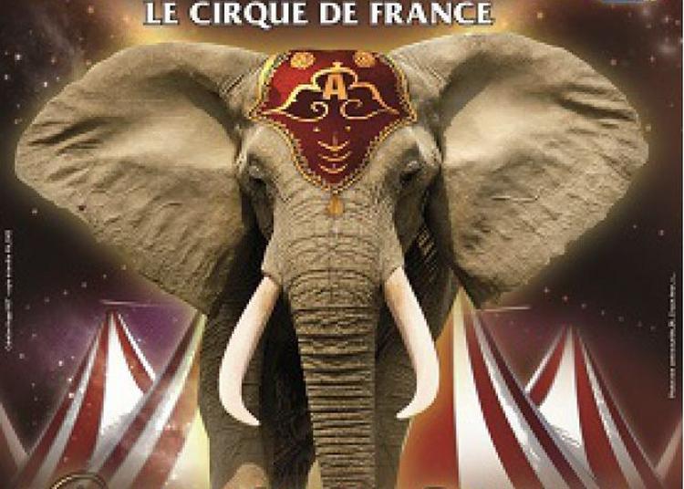 Cirque Amar L'Enchanteur à Cherbourg