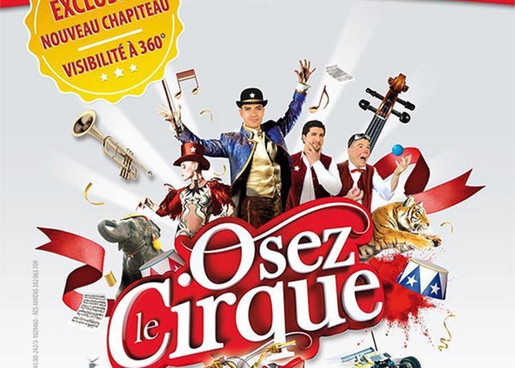 Cirque Arlette Gruss à Amiens