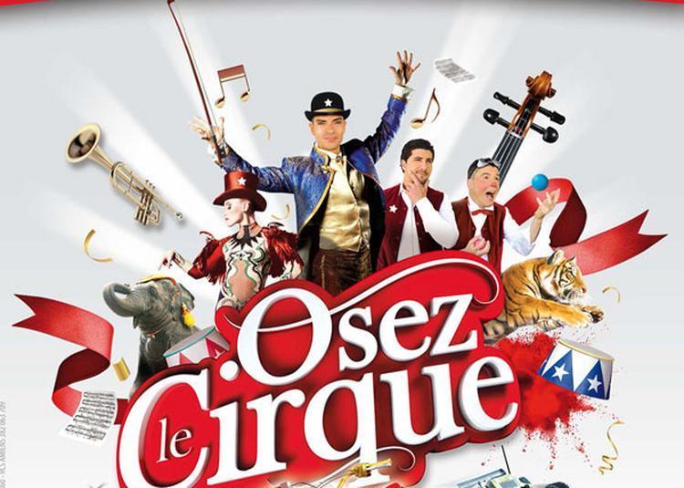 Cirque Arlette Gruss à Lille