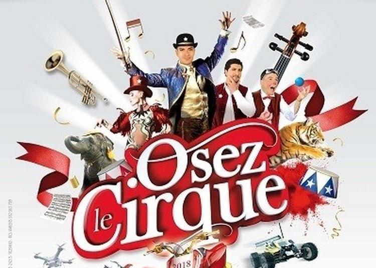 Cirque Arlette Gruss - Osez Le Cirque à Colmar