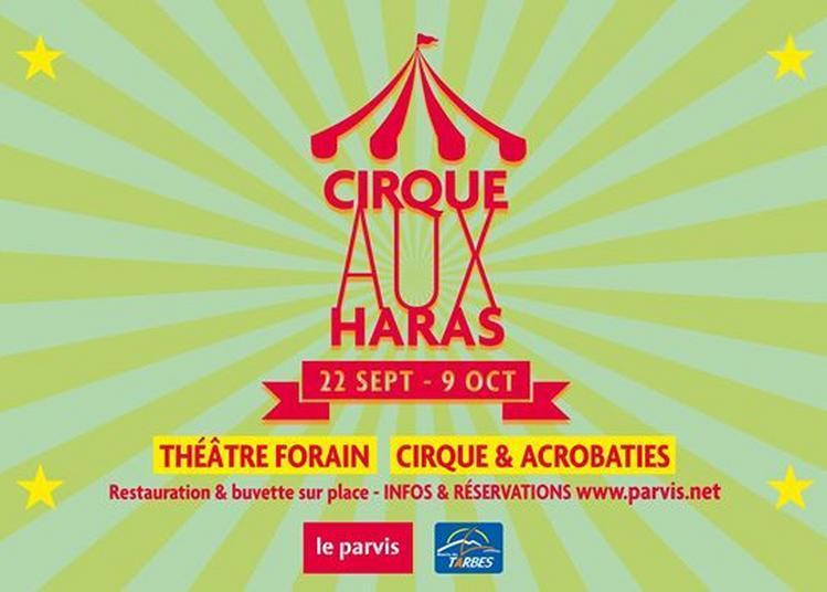 Cirque Aux Haras à Tarbes