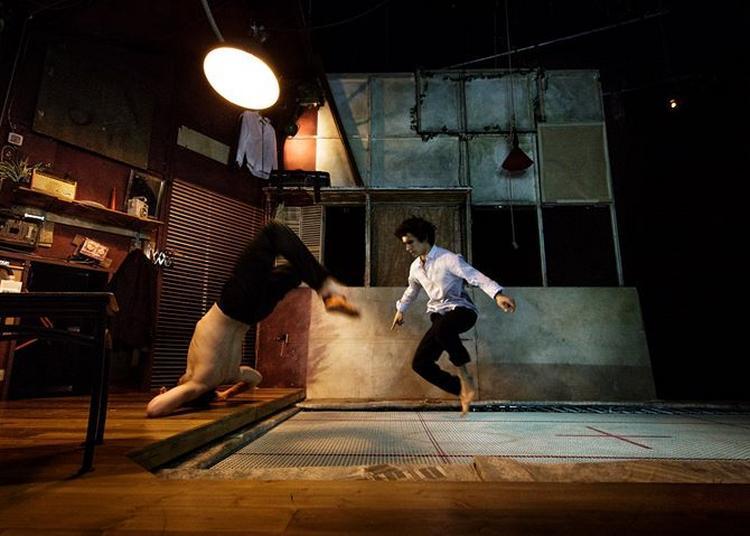Cirque : Barons perchés / Mathurin Bolze / Cie MPTA à Niort